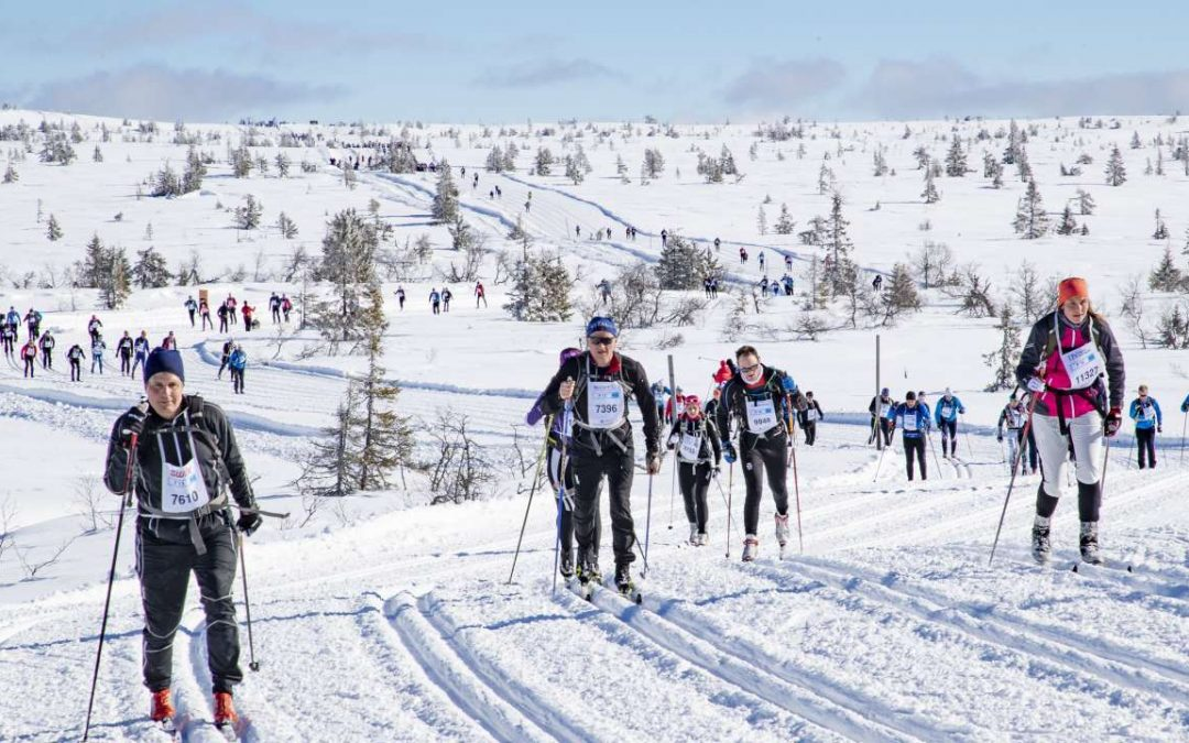 Busstransport til Birkebeinerrennet