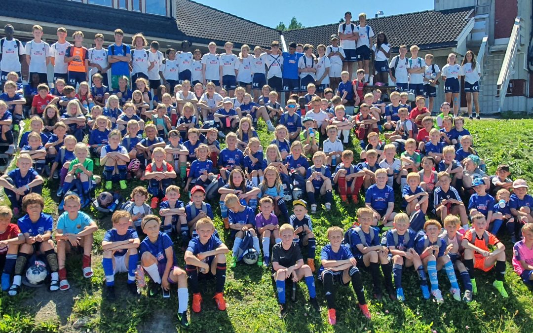 TINE Fotball- / eFotball skoler 2020